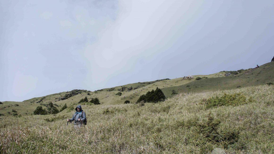 報!自由時報投稿→台灣百岳-合歡山東峰