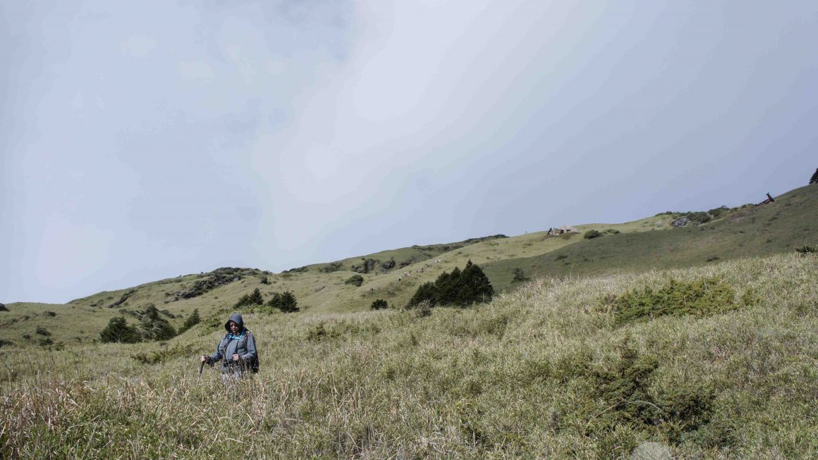 自由時報投稿-台灣百岳 合歡山東峰
